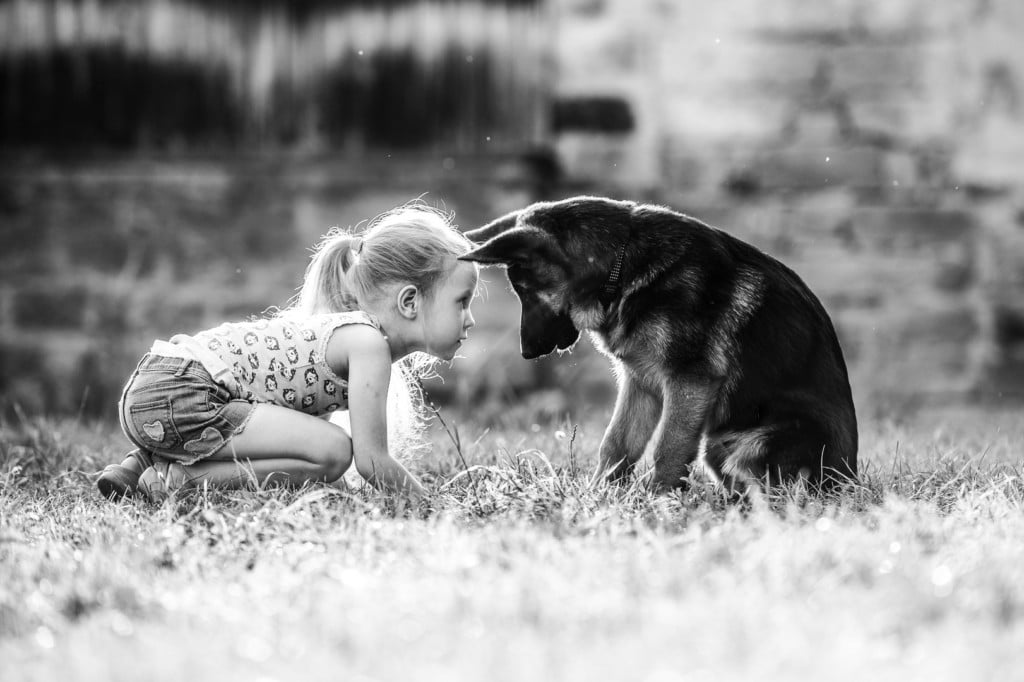 Fotos von pann- - Kind mit Hund