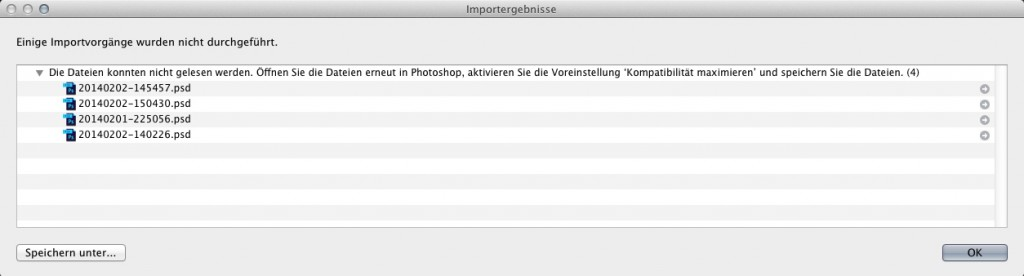 Auflistung aller Dateien, die nicht in Adobe Lightroom importiert werden konnten.