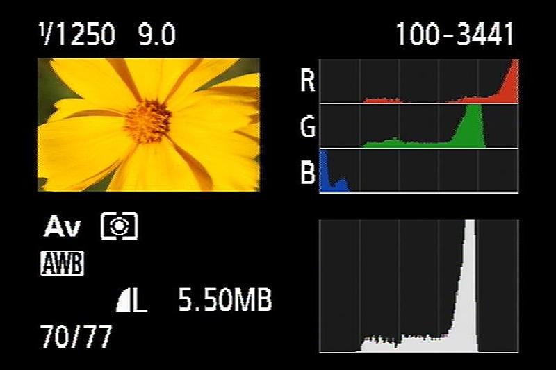 Gelb ist für den Rotkanal immer kritisch (Gelb wird aus Grün und Rot gebildet)