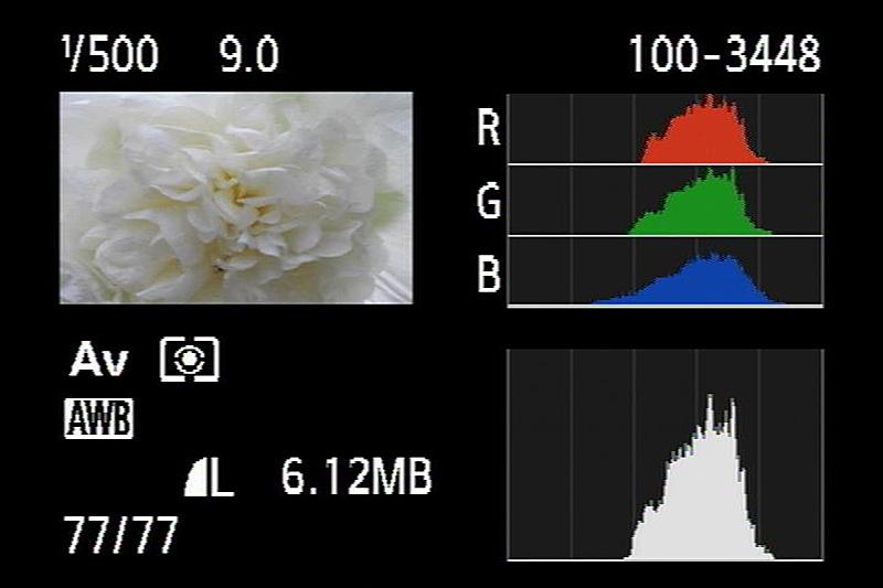 In diesem Beispiel liegen die Kanäle passend zueinander – wie bei Weiß auch zu erwarten. Das enge Histogramm zeigt, dass der Kontrastumfang gering ist – bei diesem Motiv ist das aber normal.