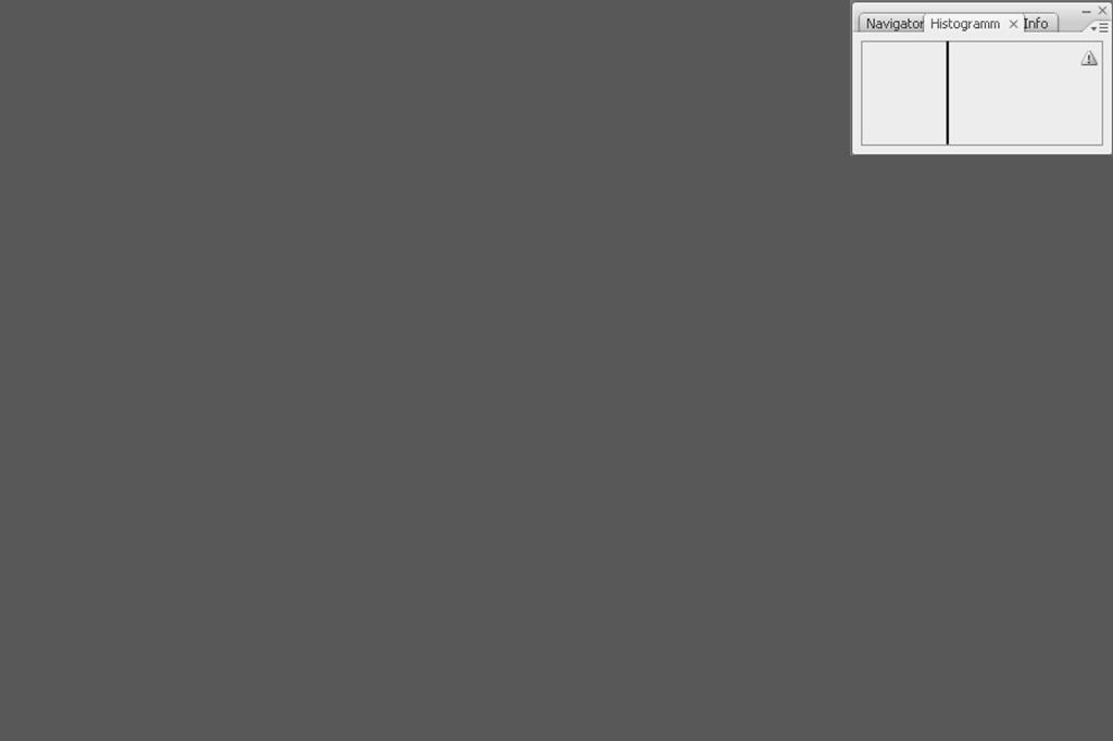 Bildet man den maximalen Mittelwert des vorhergehenden Bildes, bleibt nur noch ein gleichmäßiger mittlerer Grauwert, der entsprechend dem Originalbild etwas nach links in den dunklen Bereich verschoben ist.