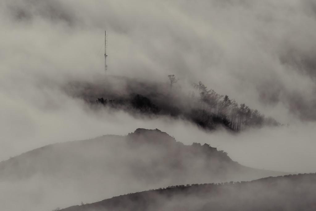 Gleiches gilt für Nebel, der sehr schnell zu Unterbelichtungen führt, wenn der Fotograf nicht manuell eingreift. 300mm | 1/1.250 Sek. | ƒ/11 | ISO 200 | + 1,5 EV