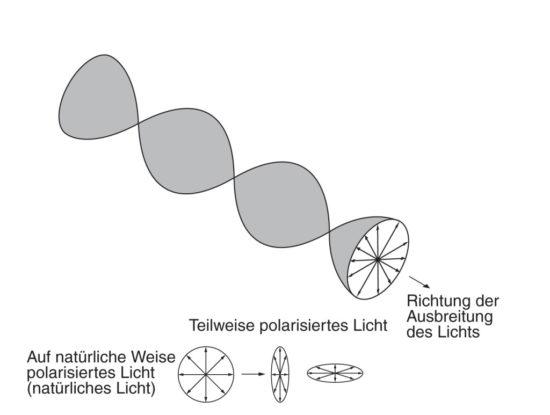 Objekiv-Filter: Polarisiertes Licht - schematische Darstellung der Lichtwelle (Bild: Canon)