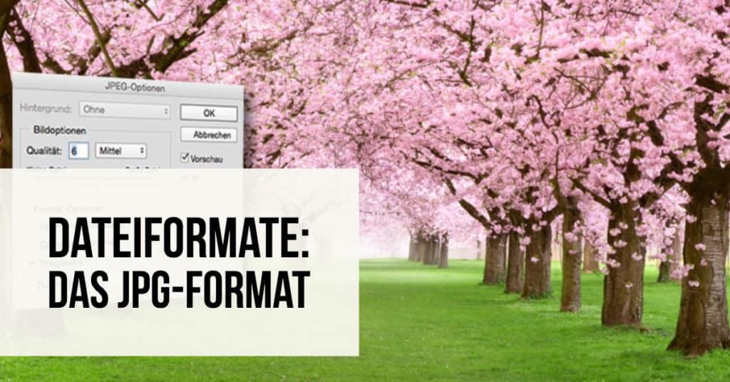 Dateiformate: Das JPG-Format