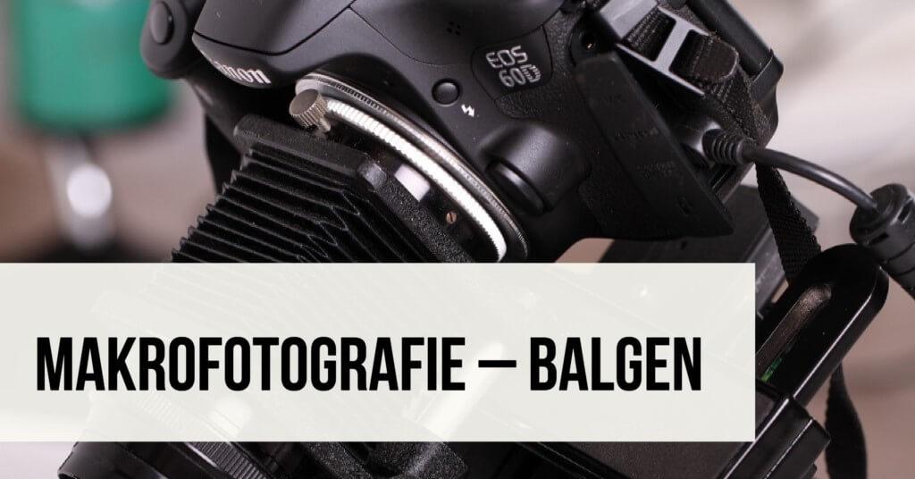 Makrofotografie – Balgen