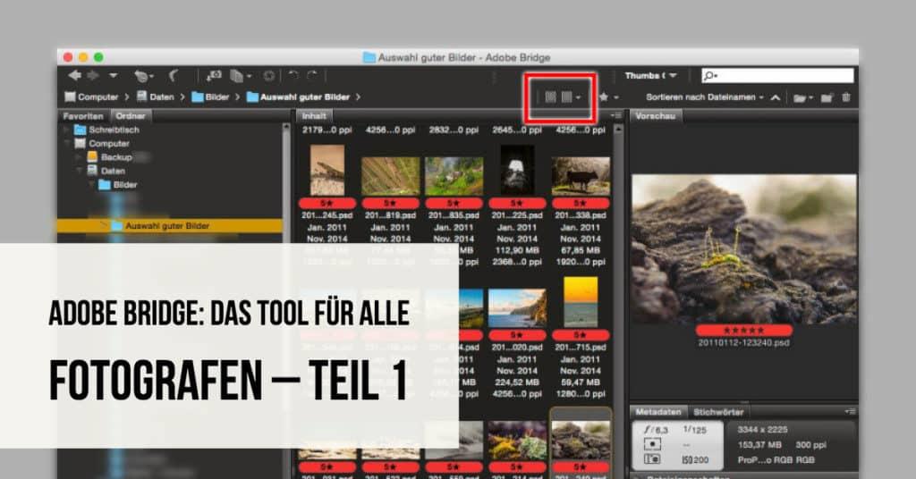 Adobe Bridge: Das Tool für alle Fotografen – Teil 1