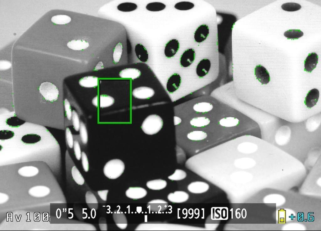 In der Darstellung Grey Scale sind die farbigen Markierungen von Focus Peak besser zu erkennen