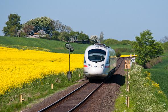 Kontraste: Diesel-ICE auf hügeliger Kleinbahntrasse. Jahreszeitliche Stimmungen sind immer gern genommen. (Vogelfluglinie bei Großenbrode)