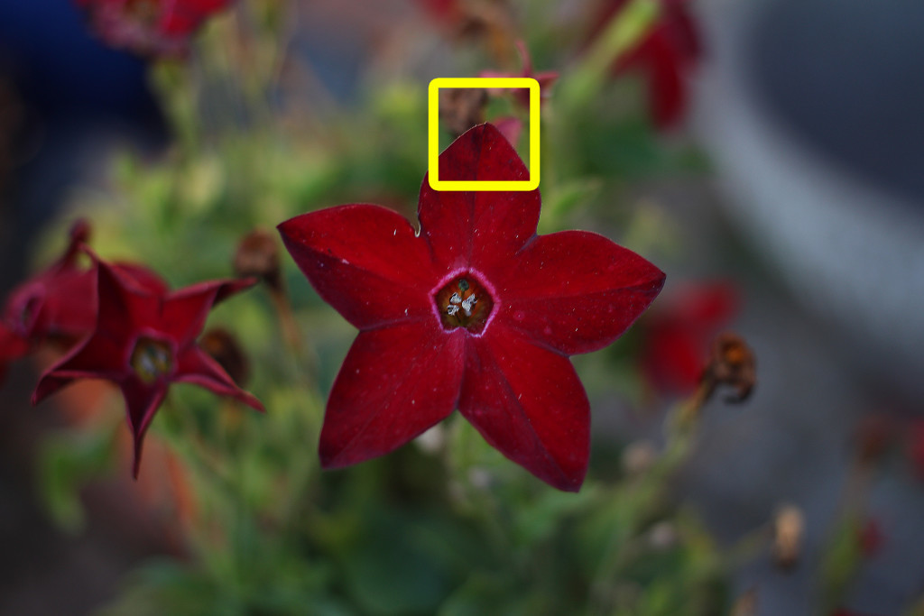 Ausgangsbild-ISO-Beispiel