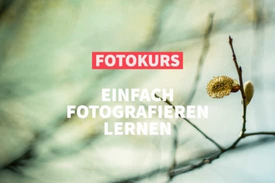 Online-Fotokurs: Einfach fotografieren lernen