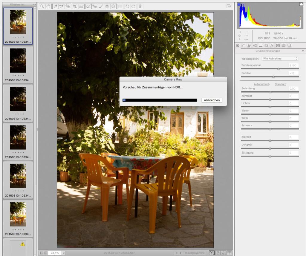 Adobe Camera RAW – 17