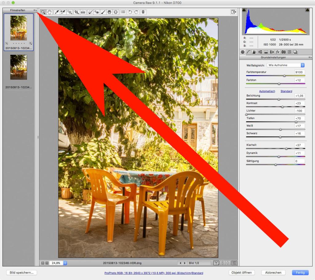 Adobe Camera RAW – 3