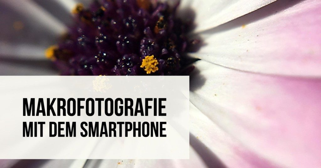 Makrofotografie mit dem Smartphone