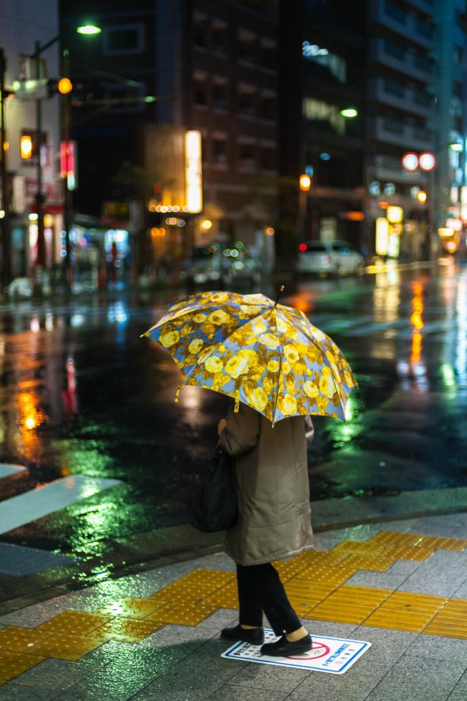 Tokio im Regen
