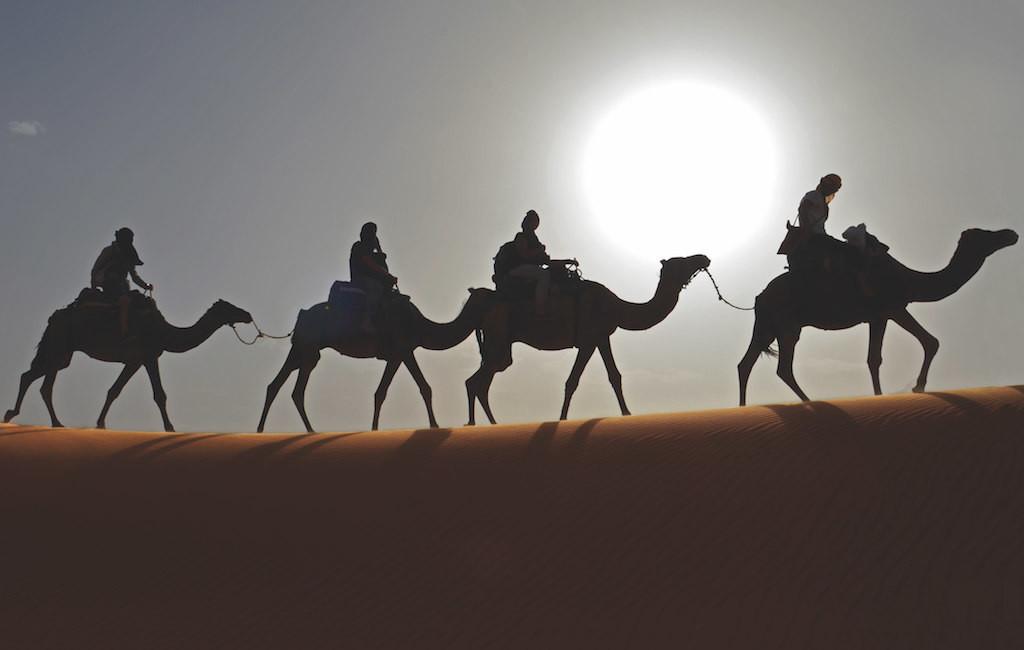 Gegenlicht Wüste