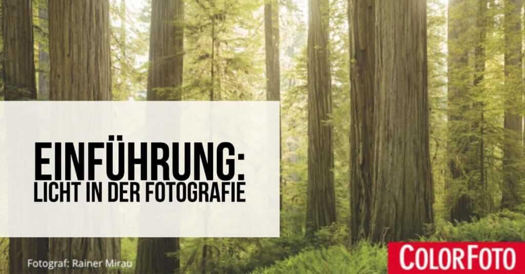 Objekte Fotografieren Beleuchtung | Einfuhrung Licht In Der Fotografie Fotoschule