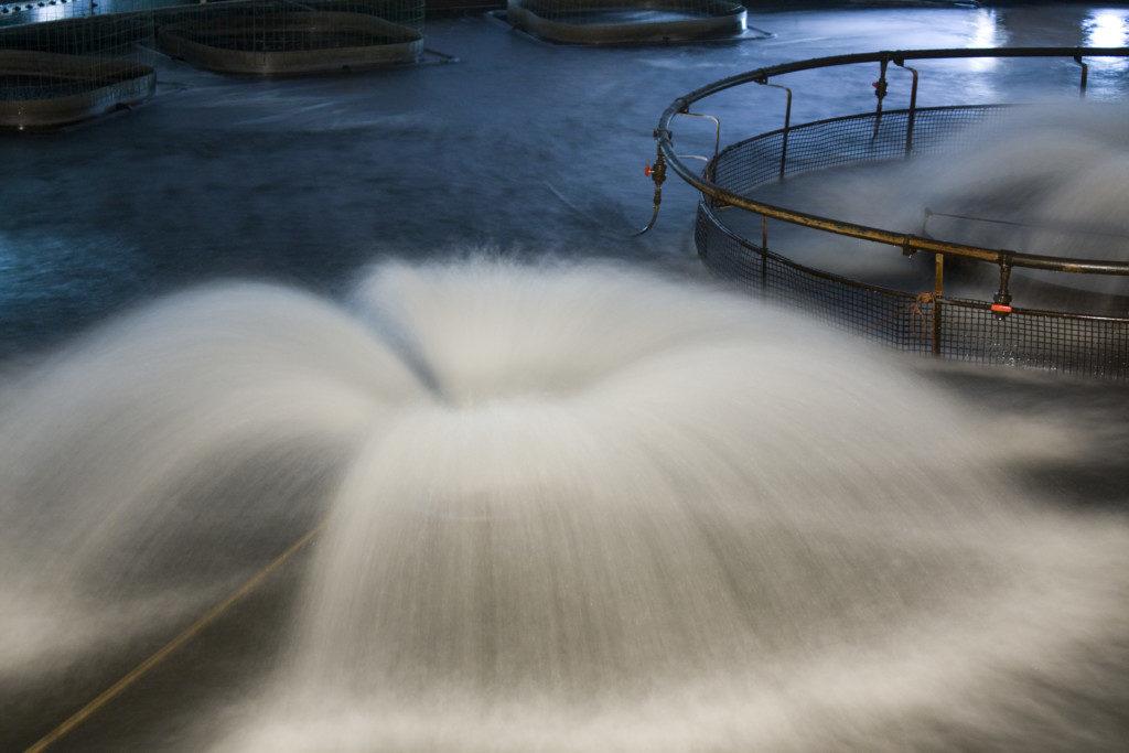 Wasser ohne Graufilter fotografieren