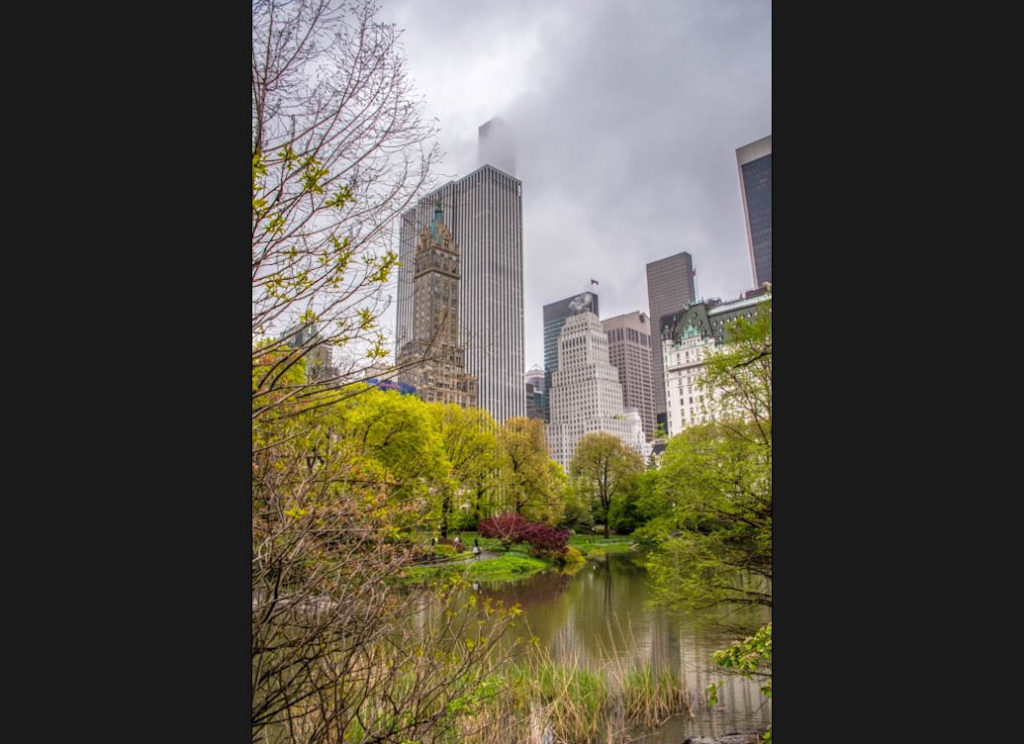 Central-Park-vorher