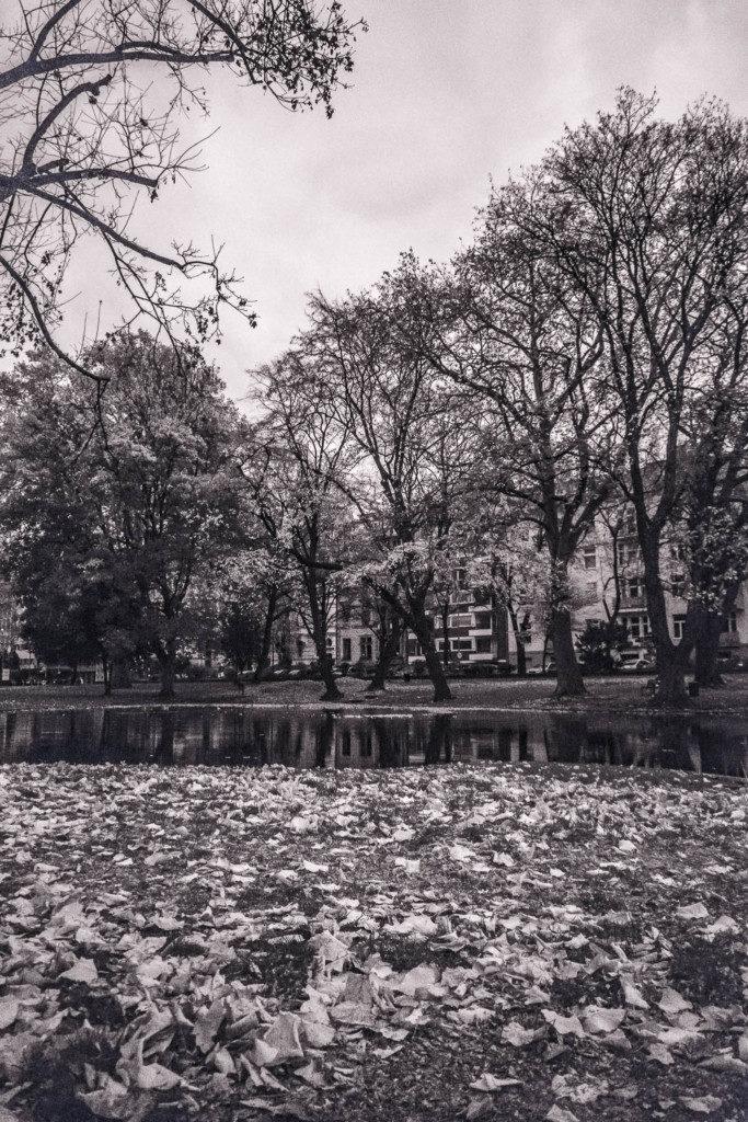 Herbst-Graustufenumsetzung