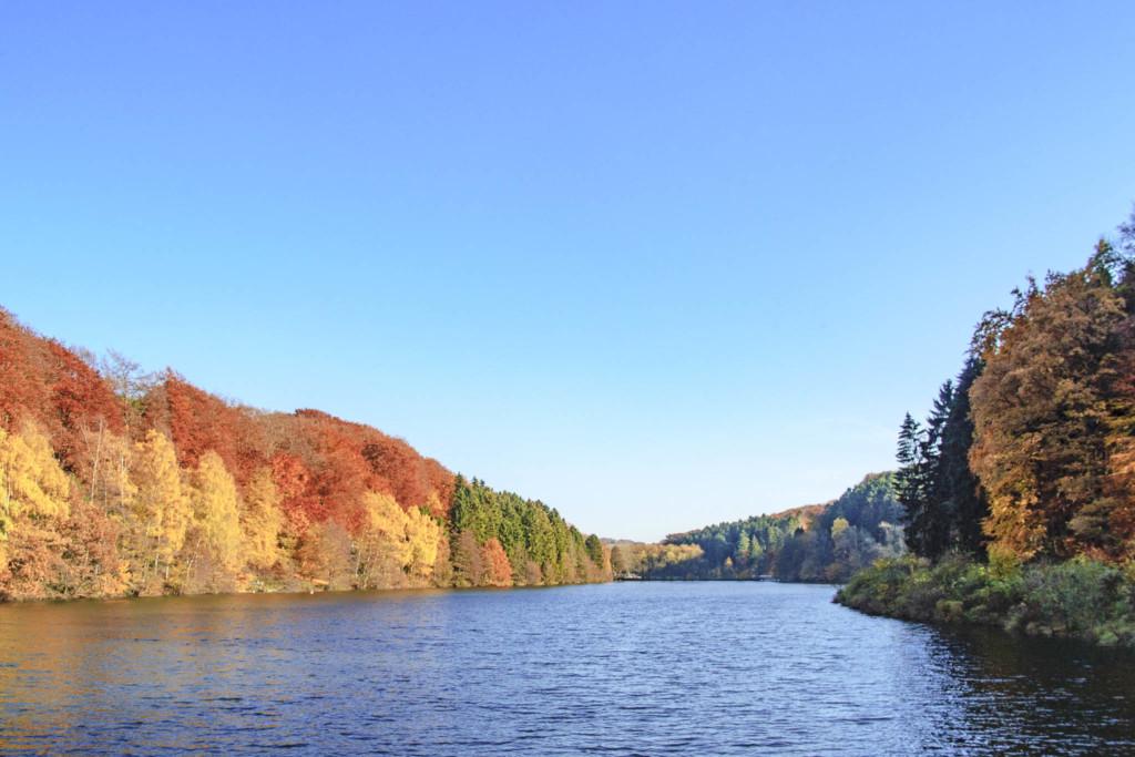 Herbst-Grauverlaufsfilter
