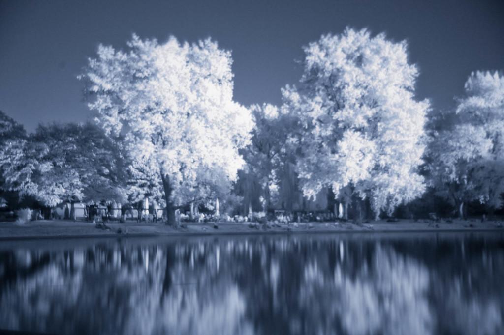 Herbst-Infrarotfotografie