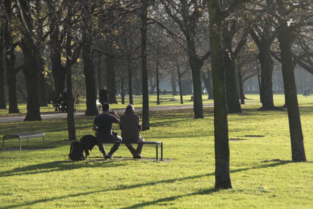 Herbst-Parkbank