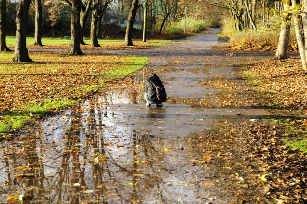 Herbst-auf-den-Boden