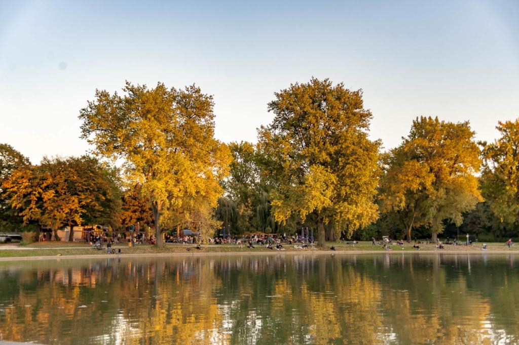 Herbstaufnahme