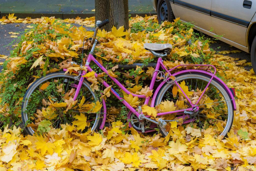 herbst-fahrrad-2