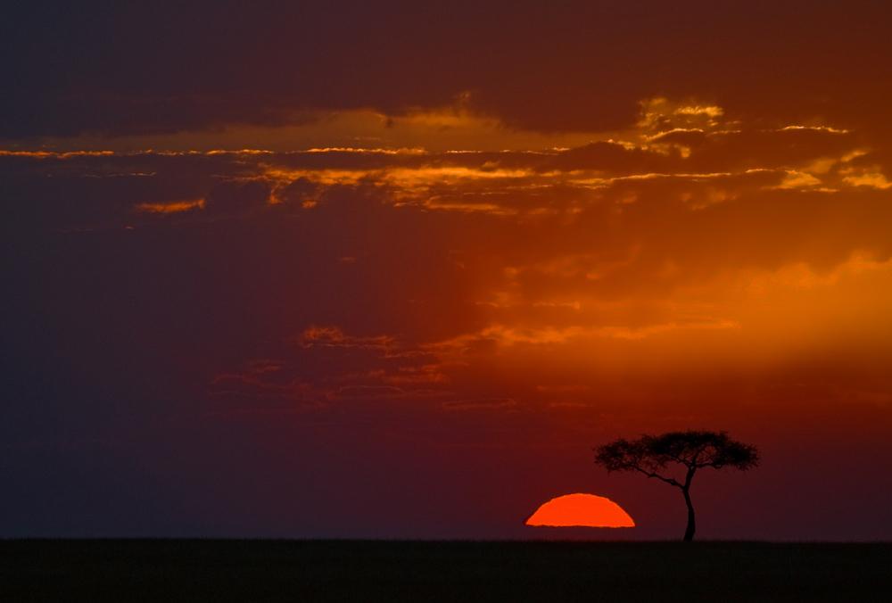 safari-sonnenuntergang