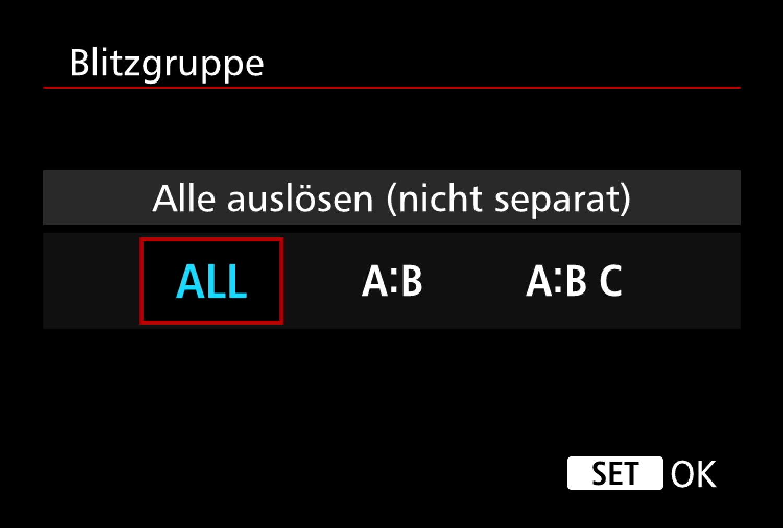 Screenshot Blitzgruppe