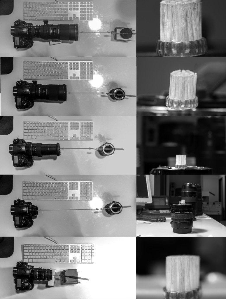 Makrofotografie: Vergleich