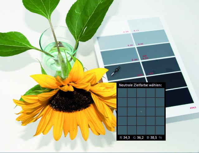 Grauwert: Fotografiere neben dem Motiv eine Grautafel mit, um einen neutralen Weißabgleich zu erhalten.