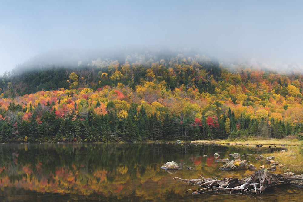 Dreigeteilter Bildaufbau: Herbstnebel am Beaver Lake in New Hampshire (USA). Der Bildinhalt gliedert sich in drei gleichwertige Teile: die Herbstbäume und ihre Spiegelung im See, ergänzt durch den Nebel oben. Foto: Siegfried Layda