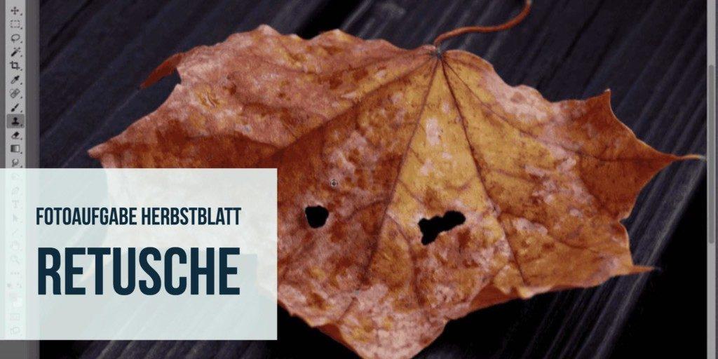 Fotoaufgabe Herbstblatt: Retusche