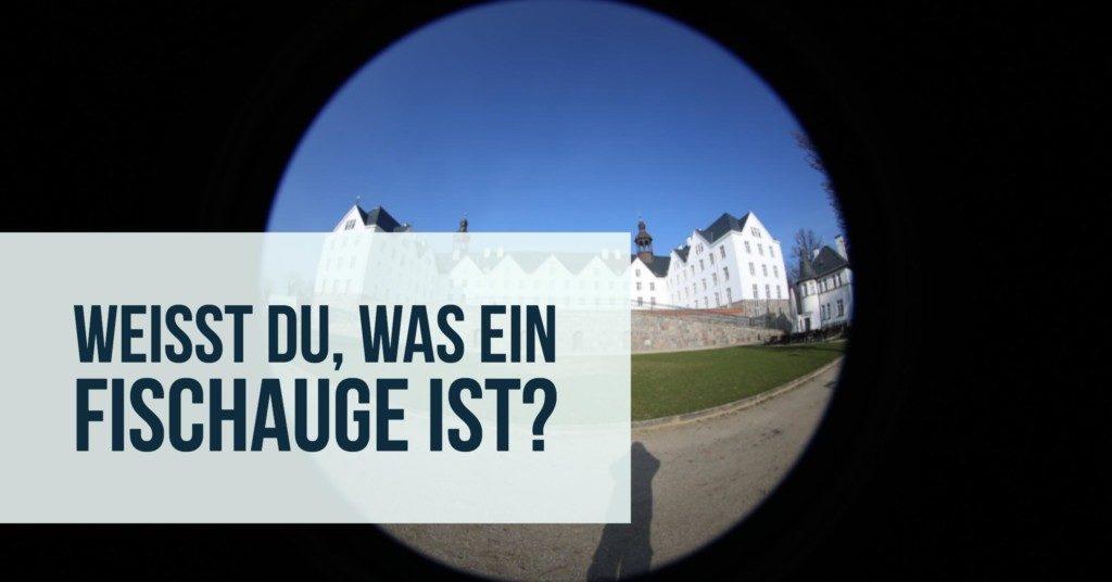 fischauge-teaser