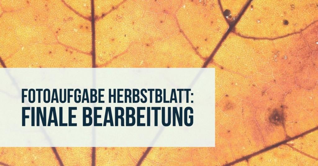 fotoaufgabe-herbstblatt-finale-bearbeitung-teaser