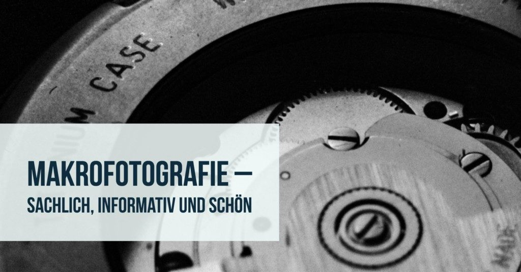 Makrofotografie – Sachlich, informativ und schön