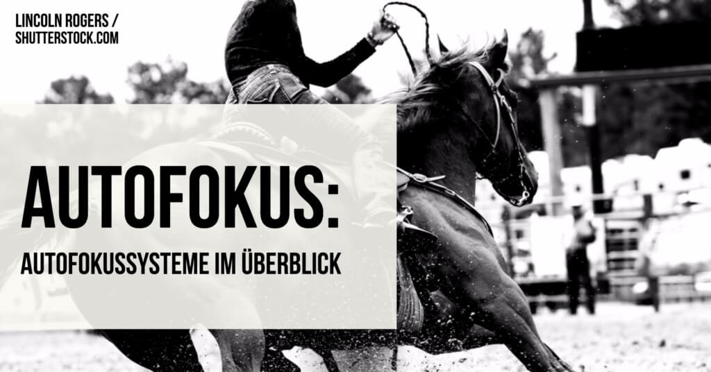 autofokus-autofokussysteme-im-ueberblick