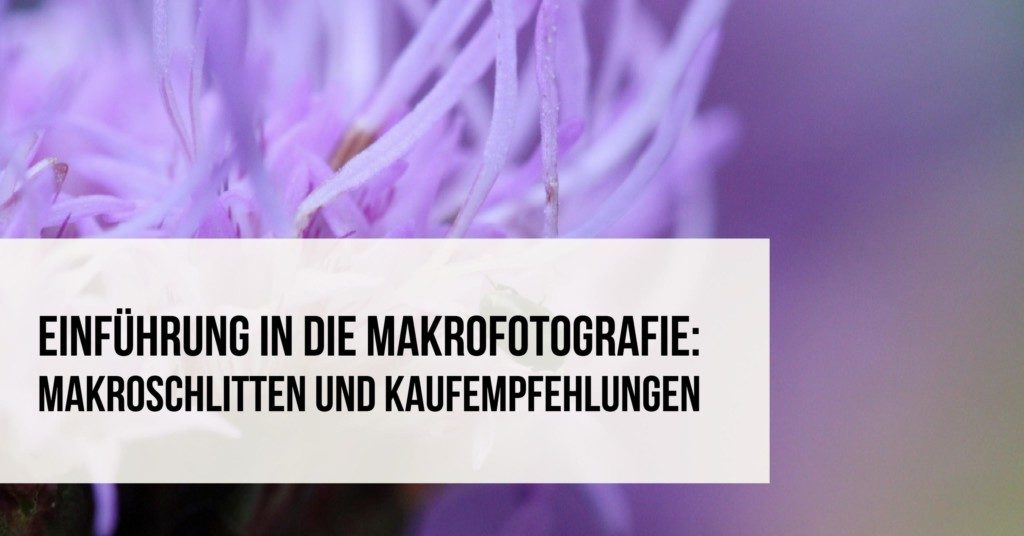 Einführung in die Makrofotografie: Makroschlitten und Kaufempfehlungen