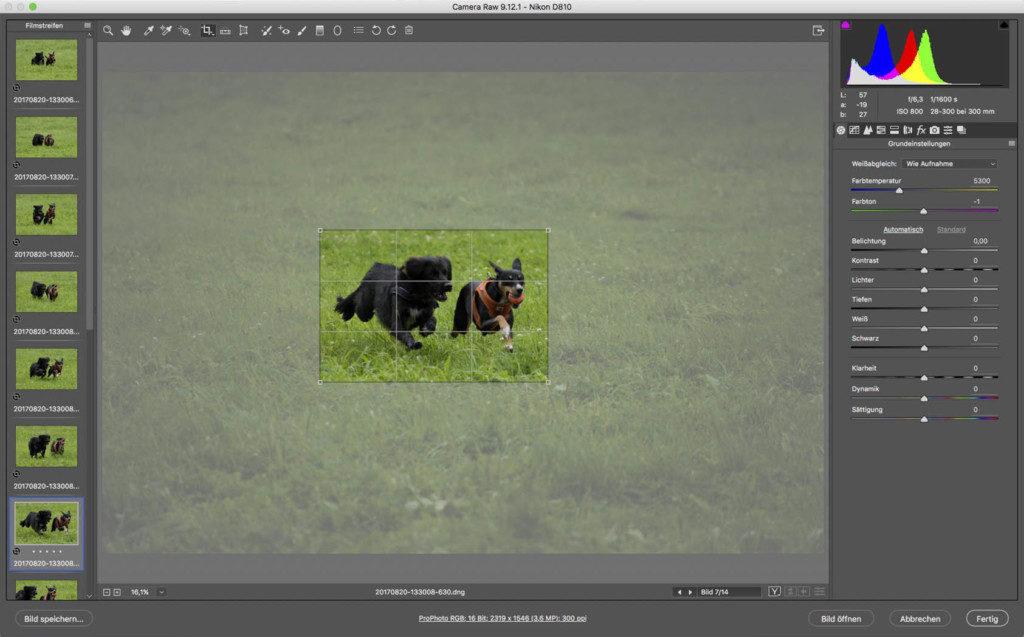 Auswahl überträgt sich in Größe und Verhältniss auf alle selektierten Fotos. Die Fläche per Maus passgenau danch bei allen Foto verschieben.