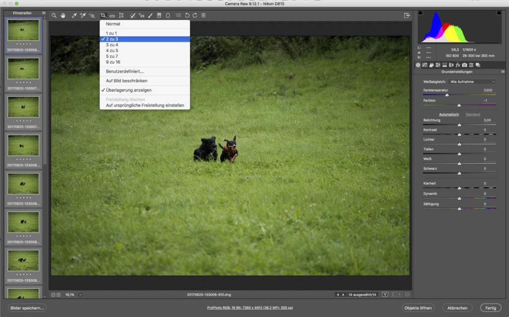 Bei Auswahl des Seitenverhältnisses bei Aktivierung aller geladener Fotos.