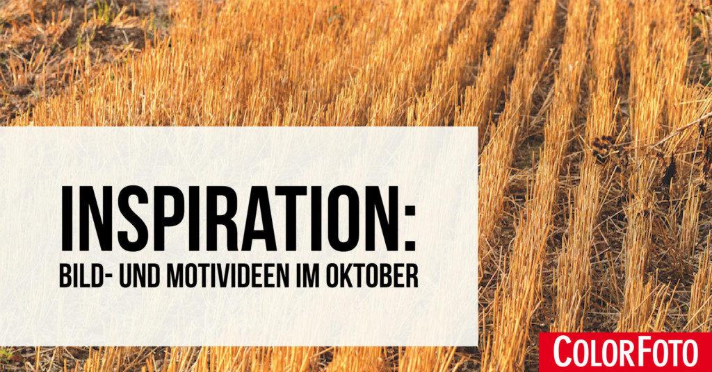 Inspiration: Bild- und Motivideen im Oktober