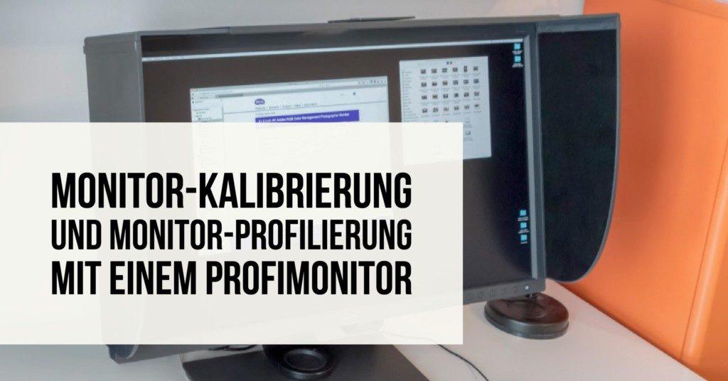 Monitor-Kalibrierung und Monitor-Profilierung mit einem Profimonitor