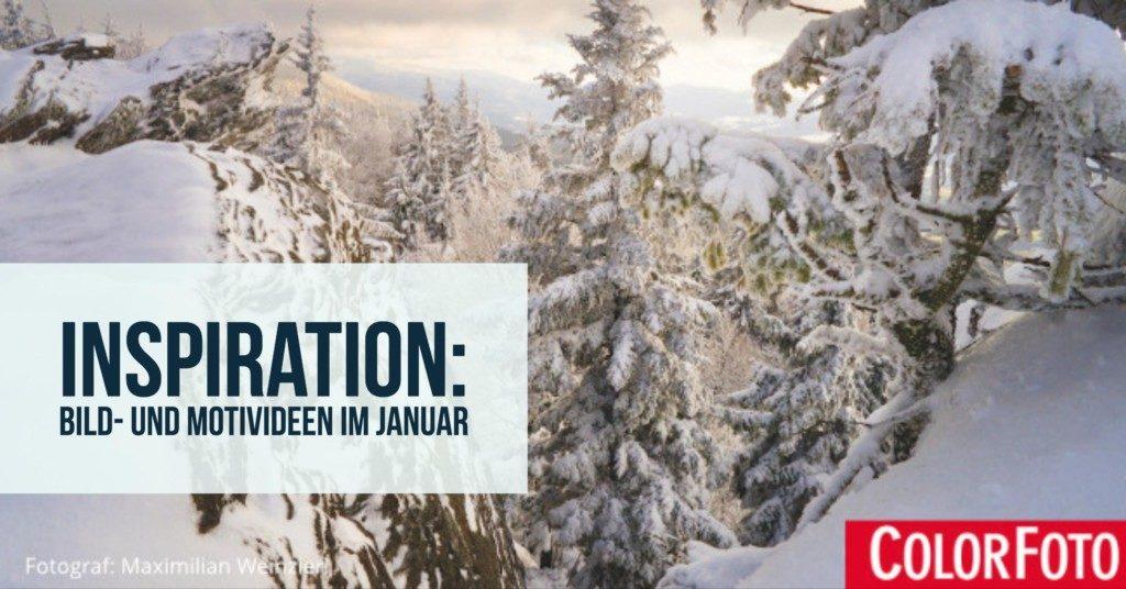 Inspiration: Bild- und Motivideen im Januar