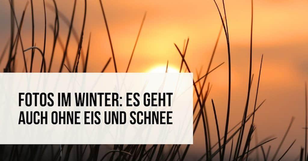 Fotos im Winter: Es geht auch ohne Eis und Schnee