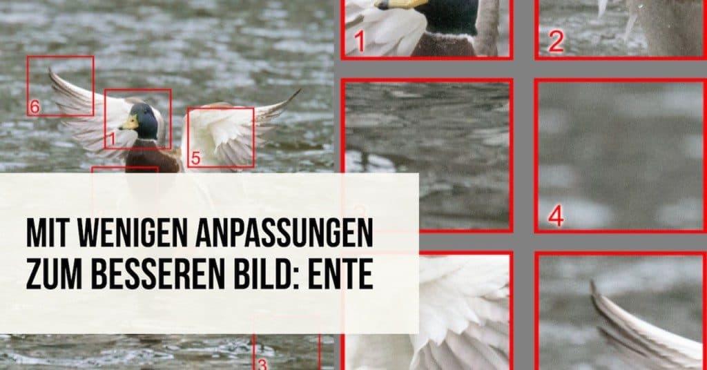 Mit wenigen Anpassungen zum besseren Bild: Ente