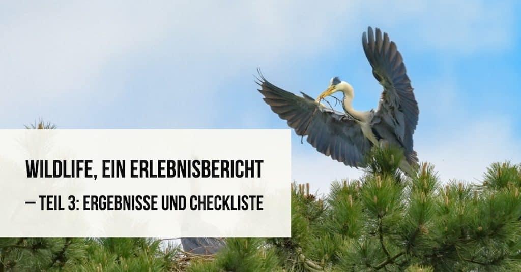 Wildlife, ein Erlebnisbericht – Teil 3: Ergebnisse und Checkliste