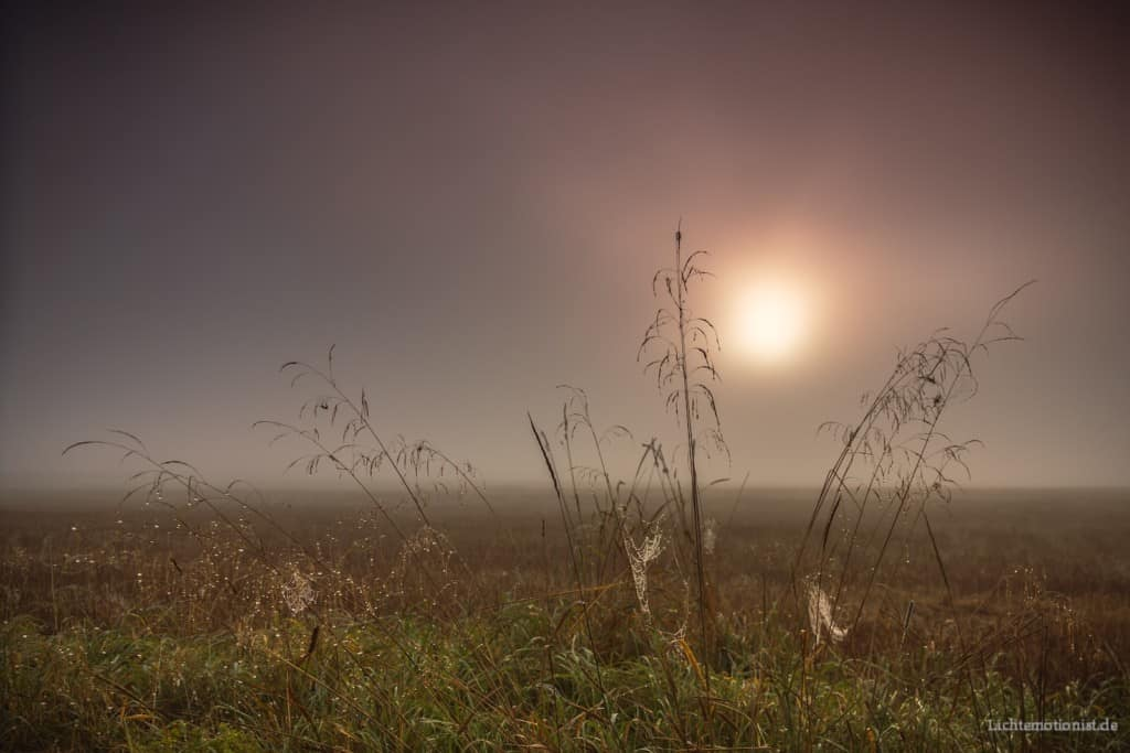 Die Sonne geht in Naturszene auf