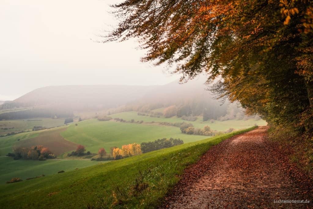 Ein Feldweg dient als praktisches Beispiel, das gelernte Wissen im Foto darzustellen.